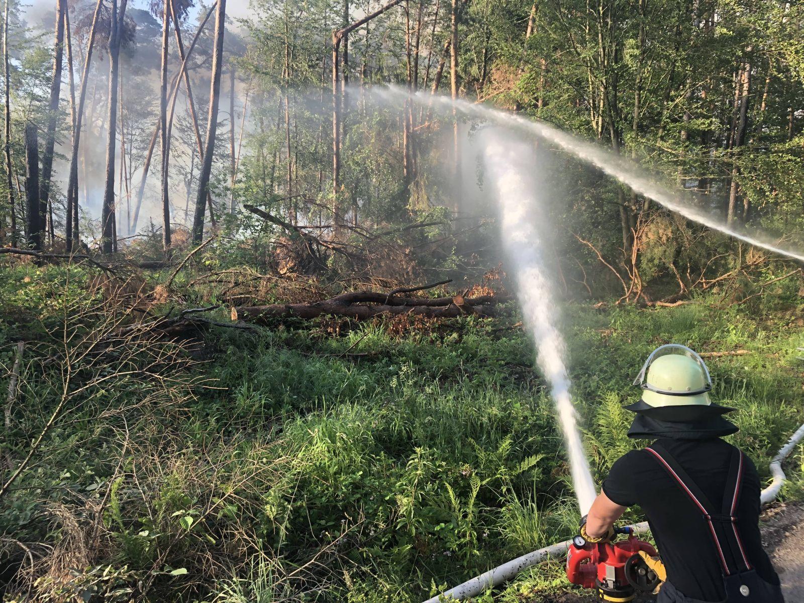 Waldbrand bei Münster Breitefeld